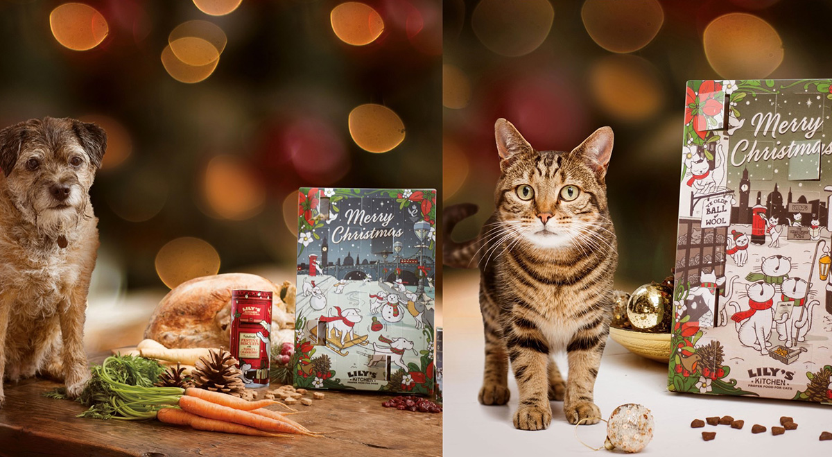calendrier avent chat chien